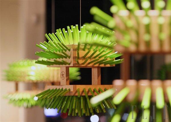 Kulturni napovednik, od 21. do 28. novembra - Foto: Fotografija promocijski material, Fotografija promocijski material LIFFe