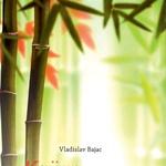 Vladislav Bajac: knjiga o bambusu (foto: Fotografija promocijsko gradivo)