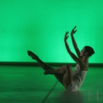 8. gala večer novih baletnih koreografij na slovensko glasbo 2008 (foto: Fotografija promocijsko gradivo)