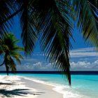 Turkizna sreča: Maldivi