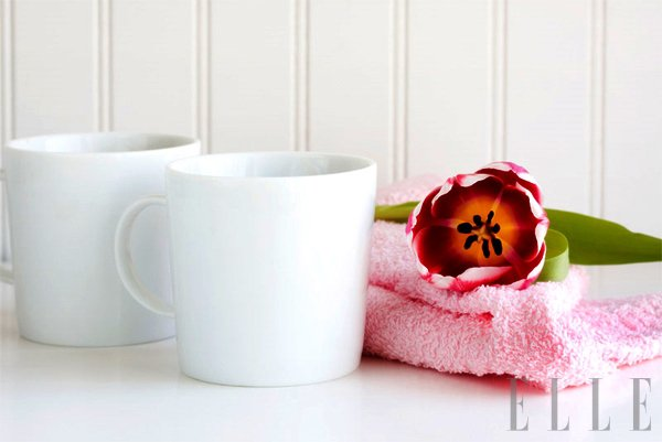 Dober začetek dneva - Foto: Fotografija Shutterstock