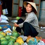 Barvita tržnica z neskončno ponudbo sadja. (foto: Fotografija Dejan Burja)
