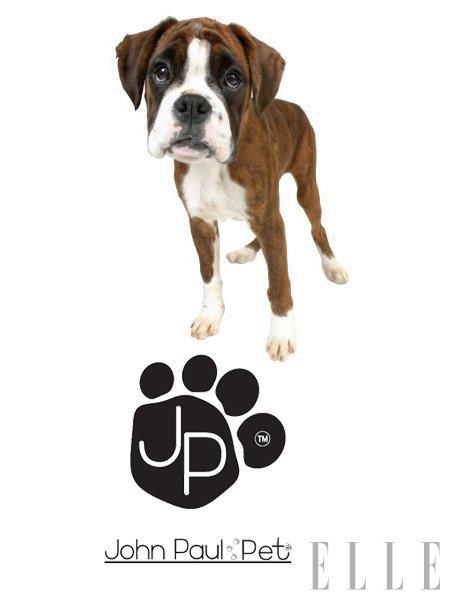 Za hišne ljubljenčke - John Paul Pet - Foto: Fotografija promocijsko gradivo
