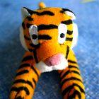 Leto 2010 bo minilo v znamenju tigra