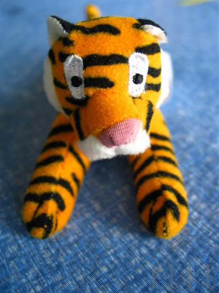 Leto 2010 bo minilo v znamenju tigra - Foto: Fotografija Shutterstock