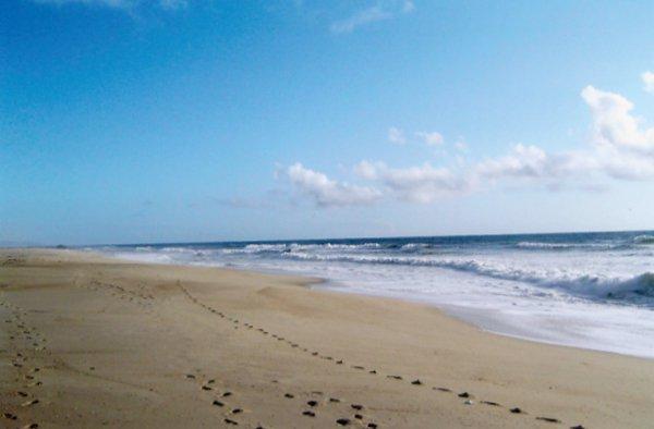 Modro poletje - Foto: Fotografija Petra W.