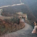 Mimikrija, China Edition: Iz Londona na Kitajsko! (foto: Matjaž Tančič in promocijsko gradivo)