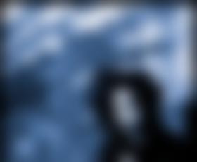 Jack White, mož, ki je z vrha »sklatil« Adele
