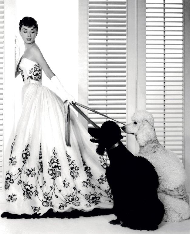 ABC luksuza - Foto: Profimedia in promocijsko gradivo