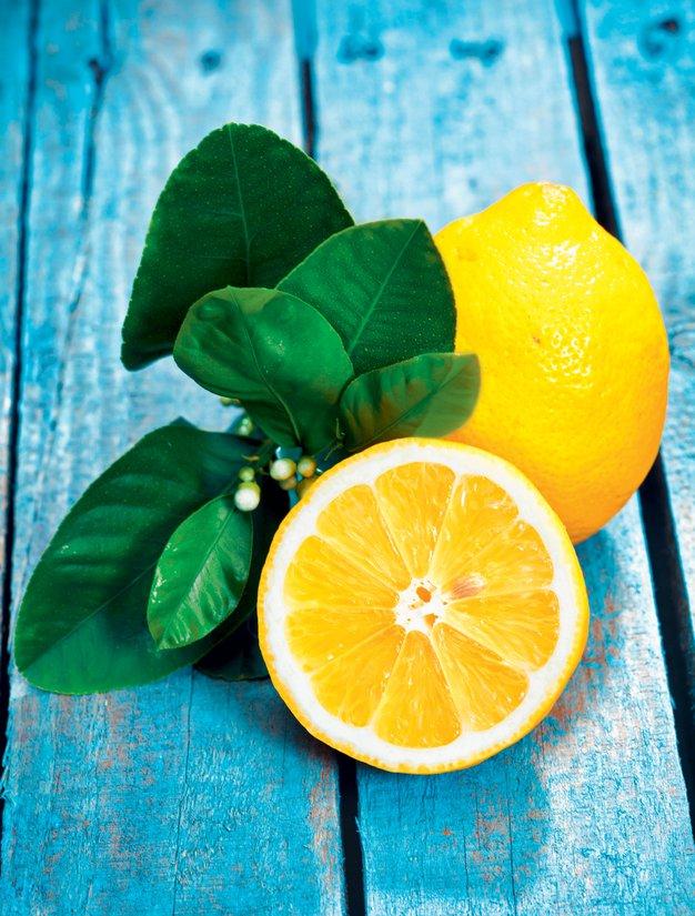 Kraljica limona - Foto: Shutterstock