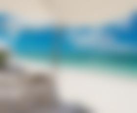 Brad in Angelina: Božična poroka na Bahamih?