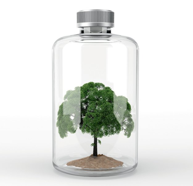 Naravno ravnovesje s pomočjo zelišč - Foto: profimedia