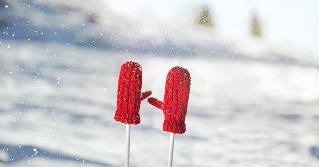 Na sneg z zavarovalno polico - Foto: Zavarovalnica Triglav