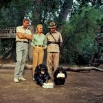 Sledite trednu safari jakne (foto: Imaxtree)