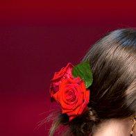 Dolce & Gabbana (foto: Imaxtree, promocijsko gradivo)