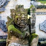 Nepozabno popotovanje na Bali (foto: Tina Curk, profimedia)