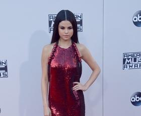 Foto: Kaj so dame nosile na podelitvi American Music Awards?