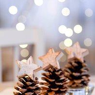 Preprost storž je lahko čudovita dekoracija (foto: profimedia)