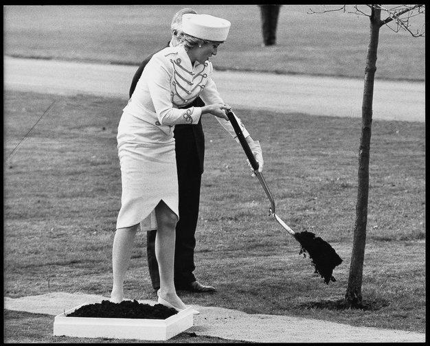 Princesa Diana leta 1987 v belem krilu, ki ji je segalo do tik pod koleni in v suknjiču s kraljevskim …