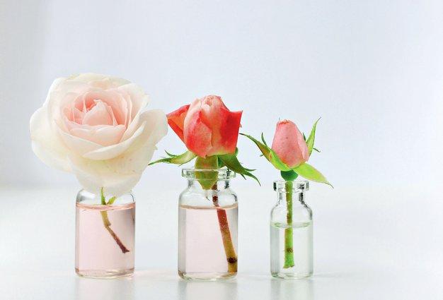 """""""Ena vrtnica na dan odžene leta stran."""" - Foto: Shutterstock"""