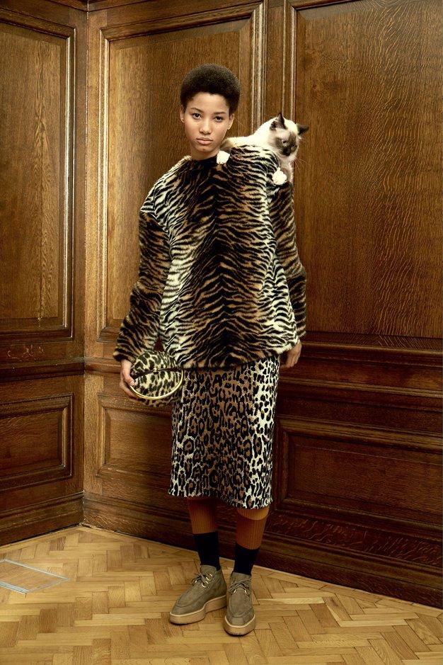 Napovedujemo pravi porast modnih mačjih dam! - Foto: Promocijsko gradivo