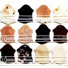 Tina Gorjanc: Javnost šokirala s kolekcijo iz človeške kože Alexandra McQueena (foto: Vic Philiphs, Sanne Visser in osebni arhiv Tine Gorjanc)