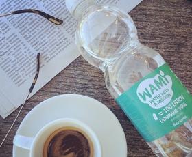 WAMI: Podjetniška ideja za rešitev svetovnega problema s pitno vodo