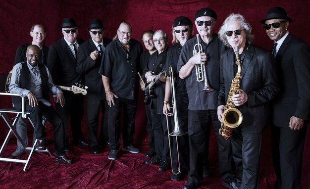The Original Blues Brothers Band: Pripravite sončna očala za blues letošnje pomladi! - Foto: Profimedia