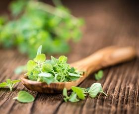 Zdravje: 8 načinov uporabe origanovega olja