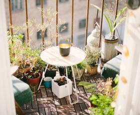 Kako balkon spremenite v zeleno oazo?