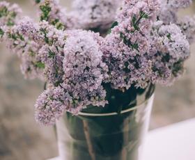 Kako rezano cvetje dalj časa ohraniti sveže?