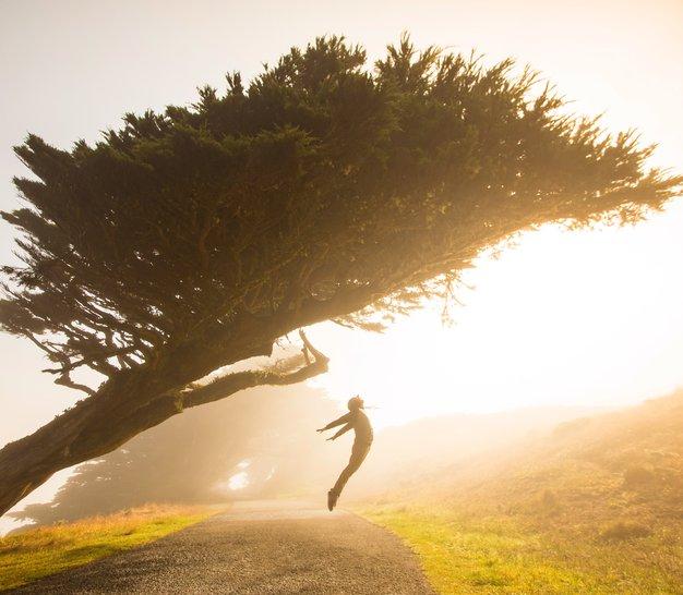 9 stvari, ki jih niste vedeli o razstrupljanju - Foto: Stephen Leonardi / Unsplash