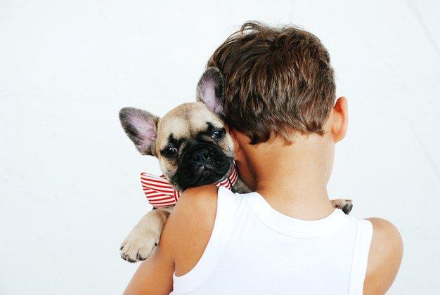 TO, da se vaš pes čudno obnaša ob bližini določeni ljudi, kaže na ... - Foto: Unsplash.com / Alicia Jones