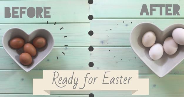 S TEM preprostim trikom navadna jajca spremenite v bela! - Foto: Youtube.com / printscreen