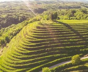 Ideja za izlet: Hrvaška Toskana, ki je le nekaj km stran od Slovenije