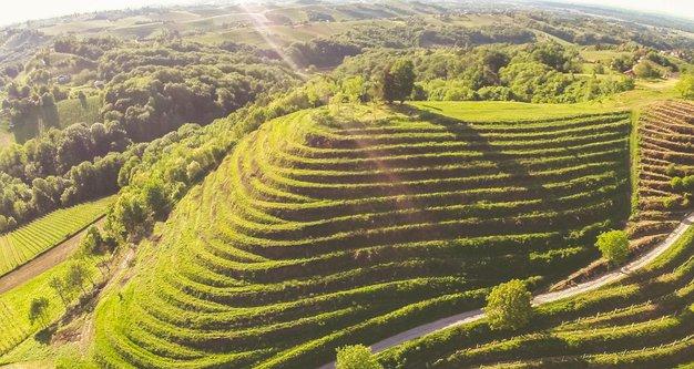 Ideja za izlet: Hrvaška Toskana, ki je le nekaj km stran od Slovenije - Foto: Promocijsko gradivo