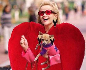 13 najboljših modnih (in hkrati zabavnih) Instagram računov, ki jih morate poznati