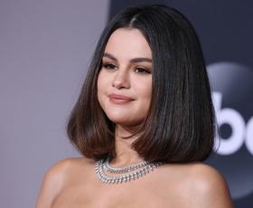 Selena Gomez je sinoči na podelitvi nagrad AMA blestela v čudoviti Versacejevi kreaciji