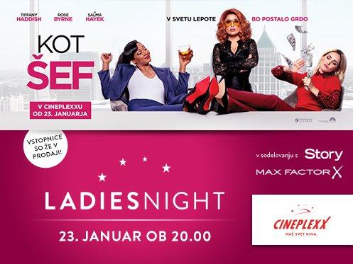 V Cineplexx ponovno prihaja LADIES NIGHT - tokrat s filmom KOT ŠEF - Foto: PROMO