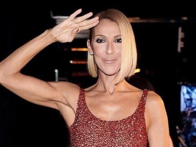 Ta obleka Céline Dion je vse, kar potrebujete za letošnjo pomlad (internet jo obožuje) - Foto: Profimedia
