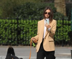 FOTO: Najbolj šik zvezdnice na sprehodu s svojimi kužki bodo navdihnile vašo garderobo