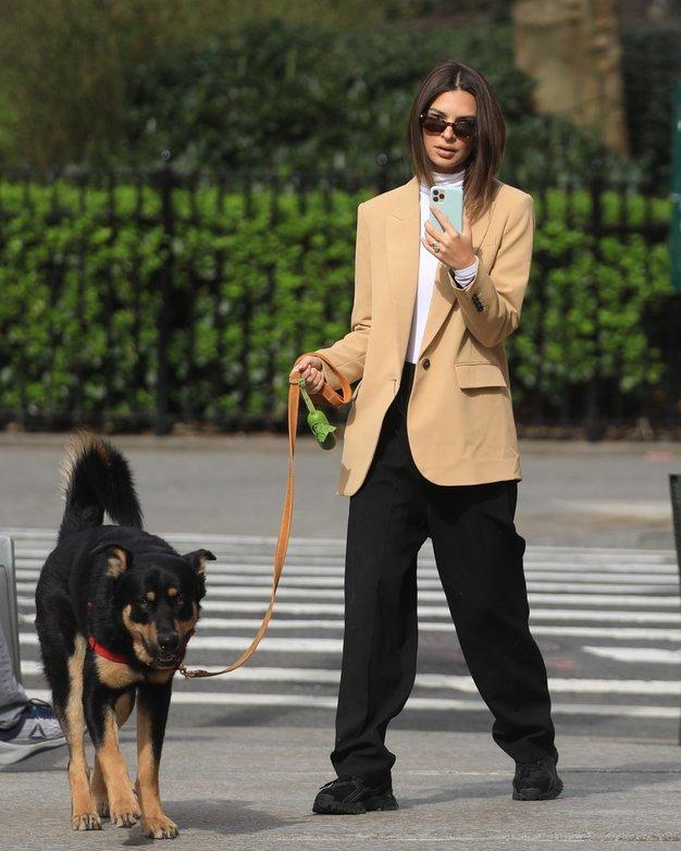 V fotogaleriji si oglejte prikupne trenutke s sprehodov psičkov in njihovih slavnih lastnikov.