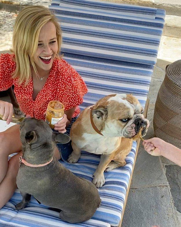 Zaljubili smo se v preprost 'piknik stajling' Reese Witherspoon - Foto: Profimedia