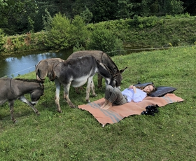 Preberite, kako naša novinarka preživlja letošnje poletje na podeželju