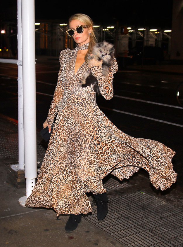 Paris Hilton nas je zopet navdušila nad leopardjim vzorcem - Foto: Profimedia