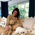 Teddy plašče bomo letos nosili kot Selena Gomez (+ kje jih kupiti)