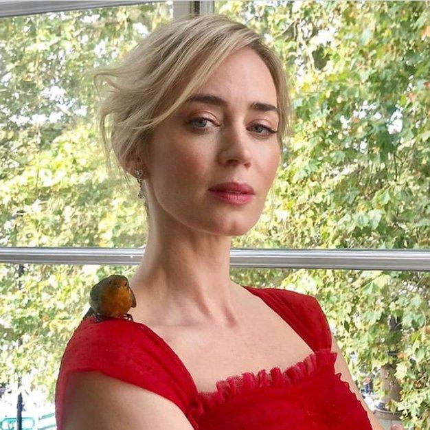 Emily Blunt nas je očarala v tem čudovitem stajlingu - Foto: Profimedia