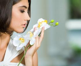 Pogovor s kreatorko naravnih dišav: »Z vonjem lahko vplivamo na počutje in obnašanje«