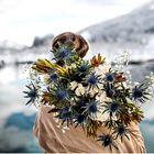 Metka Sporiš s Sanjskega šopka nam je zaupala letošnje najlepše cvetlične trende