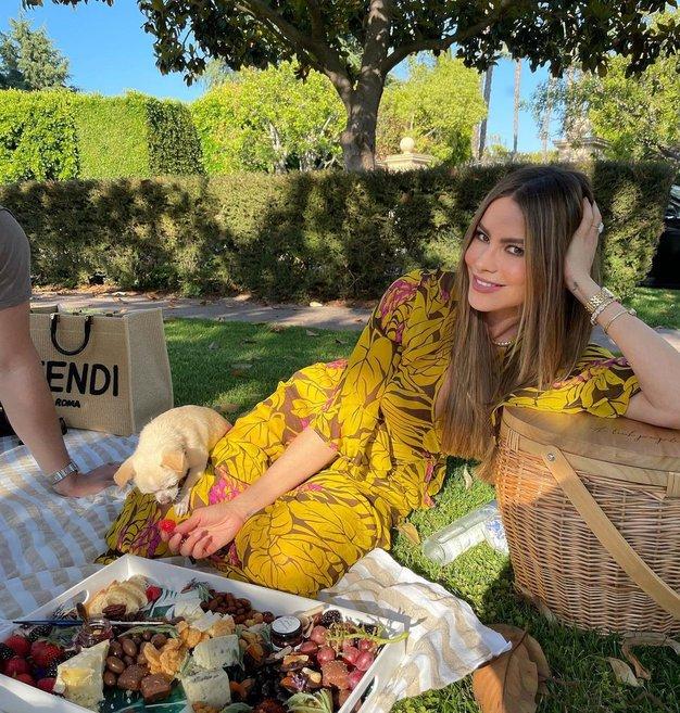 Sofia Vergara je nosila popolno poletno obleko - Foto: Profimedia